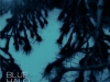 Blue Halo Effect-lead vocal, drums, percussion, keyboards, engineer/mix